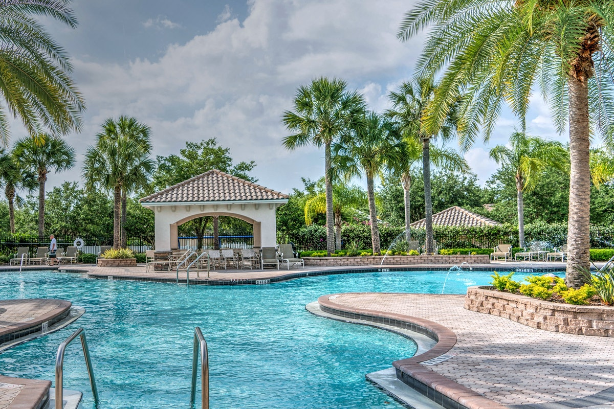 Trees You Should Avoid Planting by Your Florida Pool