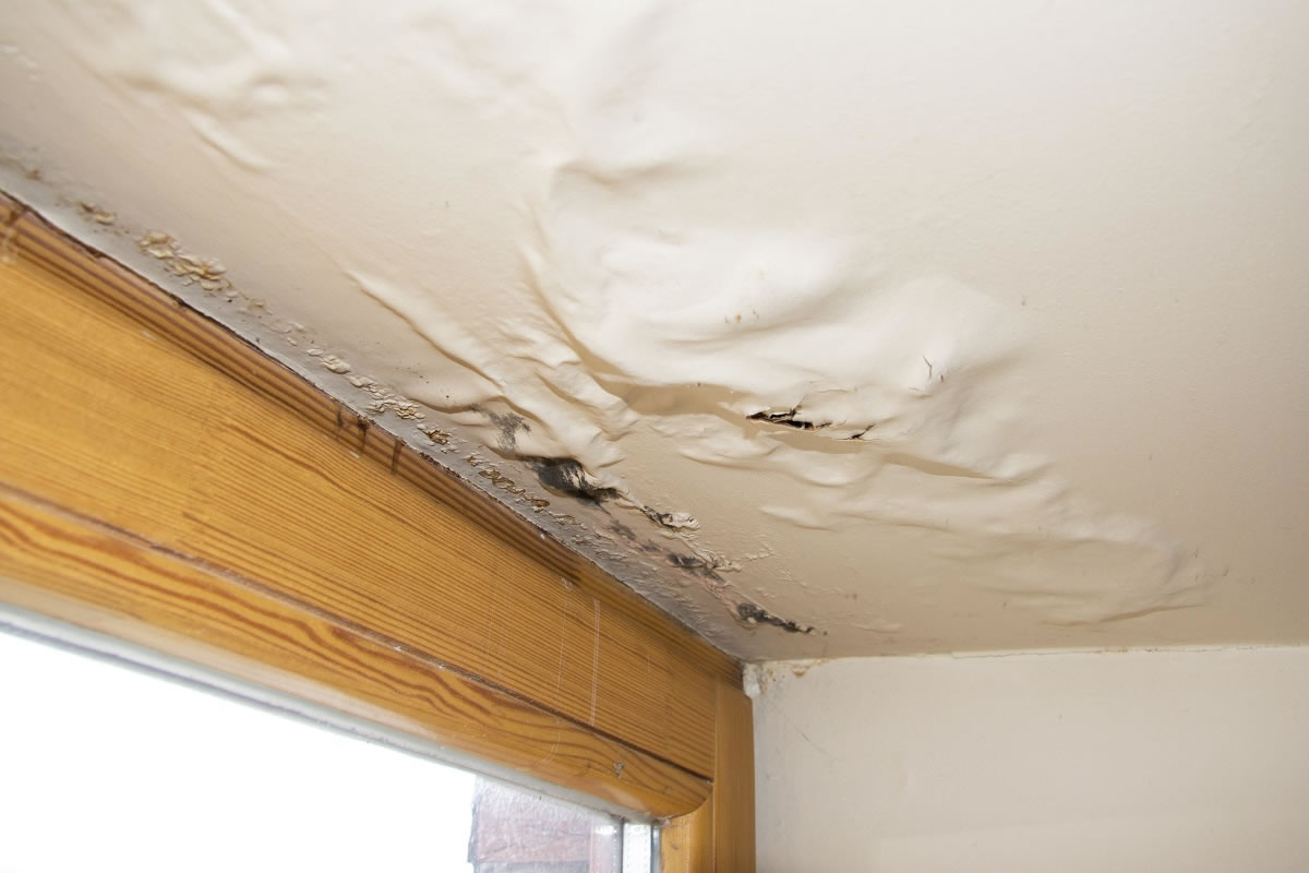 Five Reasons Why You Might Have Water Damage in Your Home
